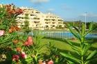 Albatros,Apartamento con piscina...