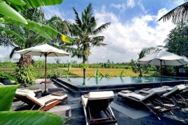 Beautiful and luxury villa  with private pool in Canggu, Bali, Indonesia for 10 persons, Canggu