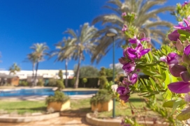 Luxury air-conditioned 3 bedroom ground floor apartment with direct access to the pool and gardens sleeping 8, in Javea, Costa Blanca.Ideal for a relaxing holiday, this modern apartment has a large private patio garden with a gate leading to the resident's pool and gardens so is ideal for families with children who wish to play on the complex unsupervised and who can freely come and go. 2 sunbeds are provided and a large awning keeps you cool while you eat al fresco.The apartment has 3 bedrooms and a sofa-bed in the lounge to accommodate 2 further guests. The bedrooms and lounge have air-conditioning. Huge wrap around terrace leads to the pool and gardens.Located in the Arenal sandy beach area, near the shops,restaurants and bars, shops and cafés, this apartment is ideal for those not wishing to use a car while on holiday. There is a good supermarket just outside the complex so you can truly park your car and not have to use it throughout your holiday!, Javea