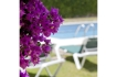Holiday home:Tosalet Complex